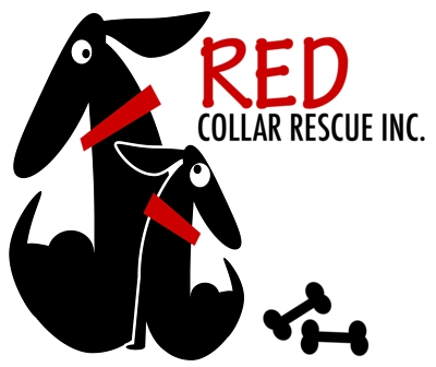 Red Collar Rescue